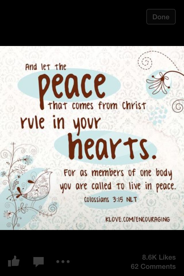 Bible verse live in the word pinterest verses bible and bible scriptures sciox Choice Image
