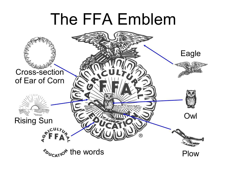 Ffa Symbol Meanings