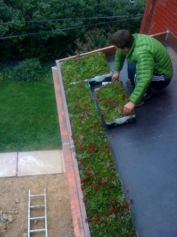 Best Liveroof Hybrid Green Roofs Showcase View Green Roof 640 x 480