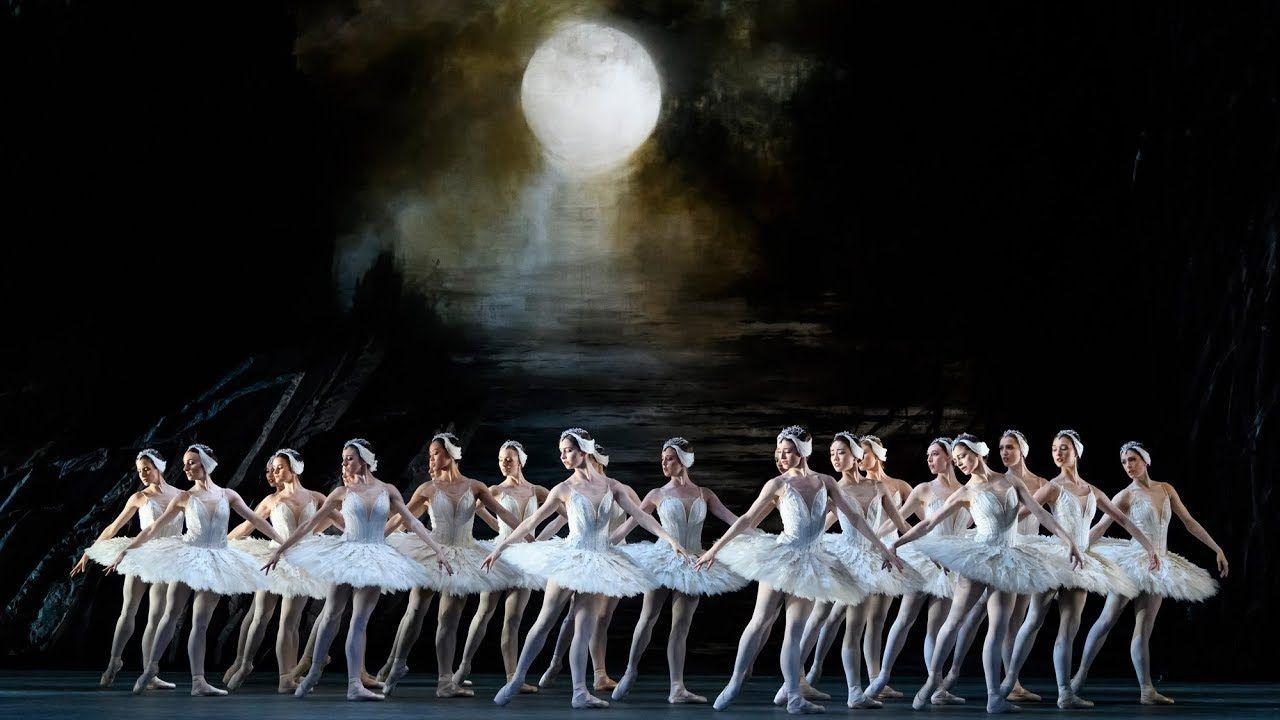 Swan Lake Act Ii Corps De Ballet The Royal Ballet Royal Ballet Ballet Ballet Performances
