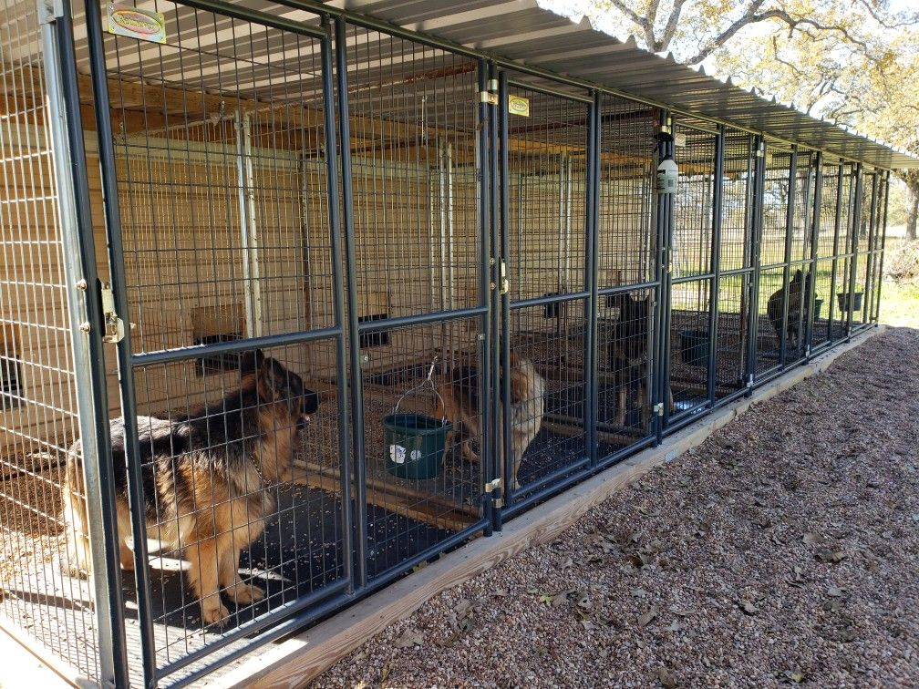Our Indoor Outdoor Kennels At The Vhr Ranch In Ledbetter Tx