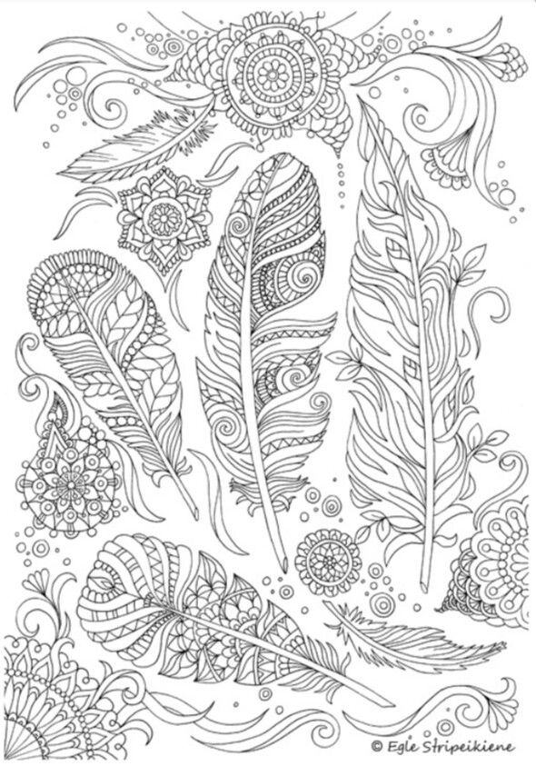 Zendoodle Feathers Complex Adult Coloring Page Free Printable