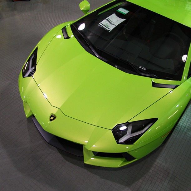 Alligator Lamborghini Aventador Super Cars Amazing Cars Classy Cars