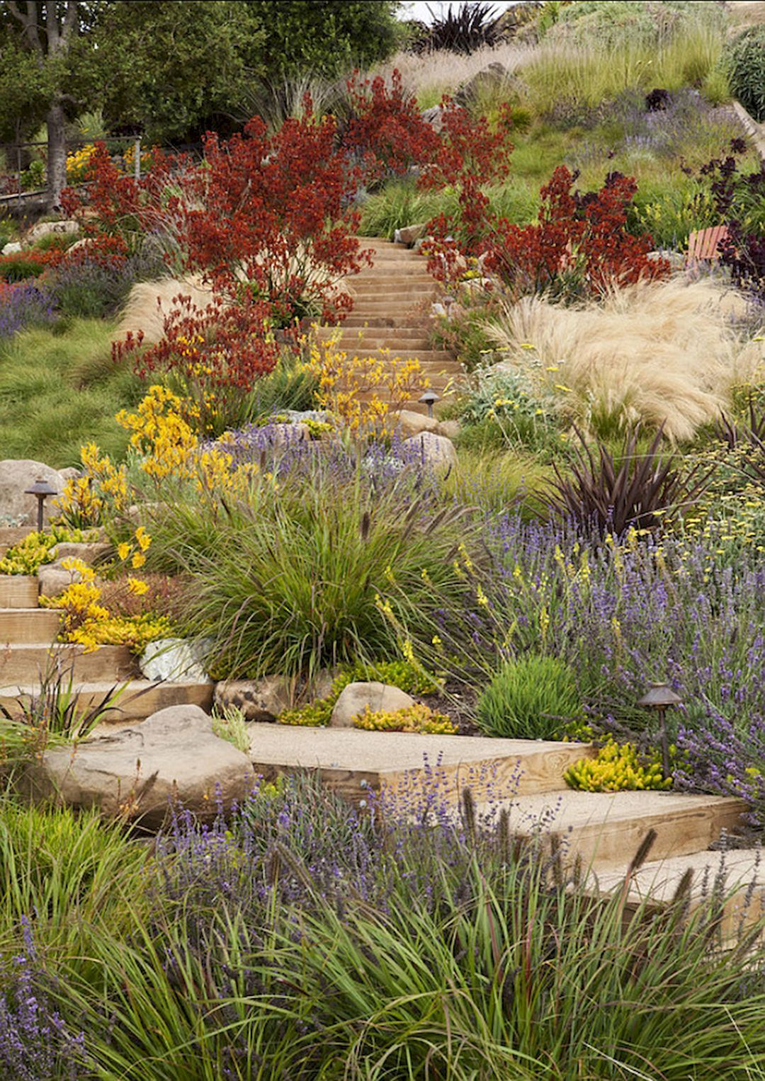 15 Best Ideas For Garden Plants With Low Maintenance | Gardening ...