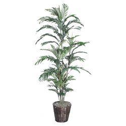Deluxe Areca Palm Tree