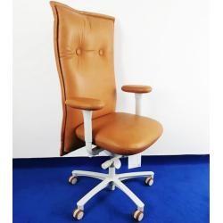 Photo of Executive chair Lff Brain Storm Hr real leather Ergo Top selection color Optionsbla-ulm.de
