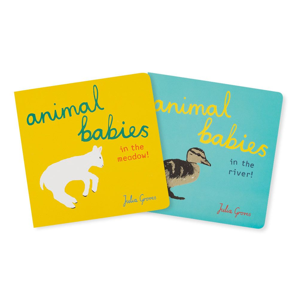 Animal Babies Board Book in Picture Books – Chinaberry