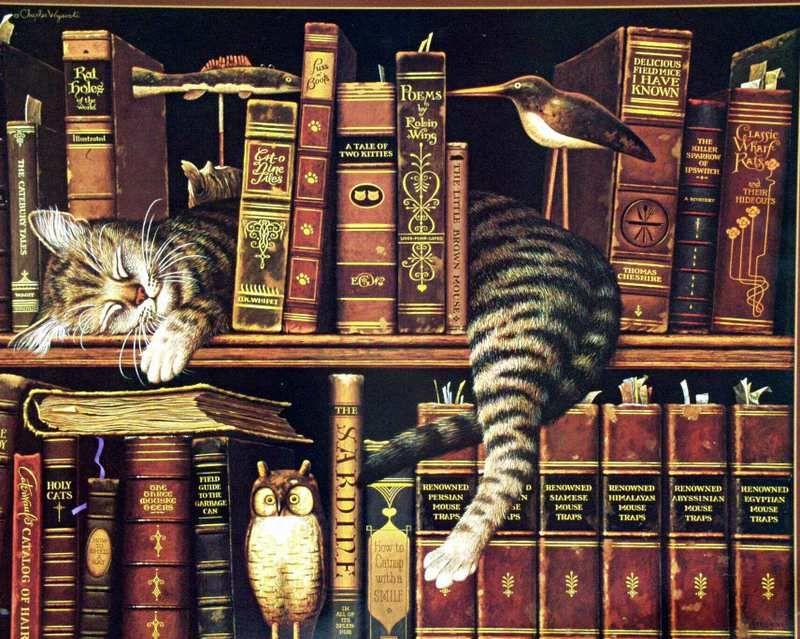 I libri da leggere almeno una volta nella vita