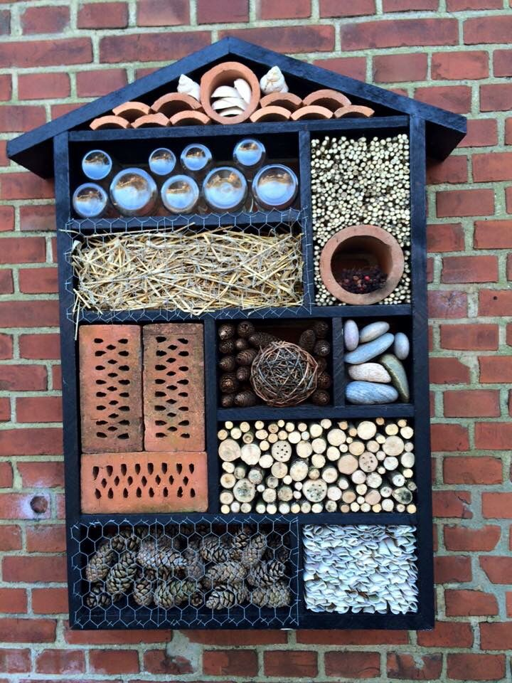 diy bee hotel beekeepingrocks animal world pinterest h tel insectes jardins and jardinage. Black Bedroom Furniture Sets. Home Design Ideas