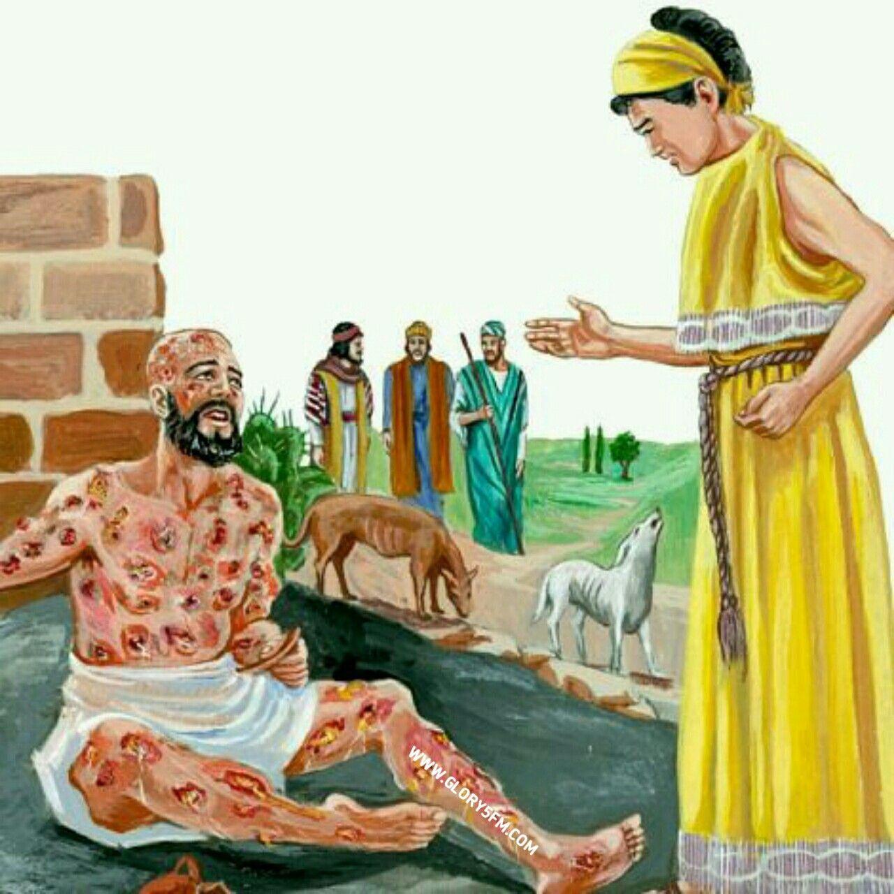 Pin by Glory5fm on Job bible, Bible
