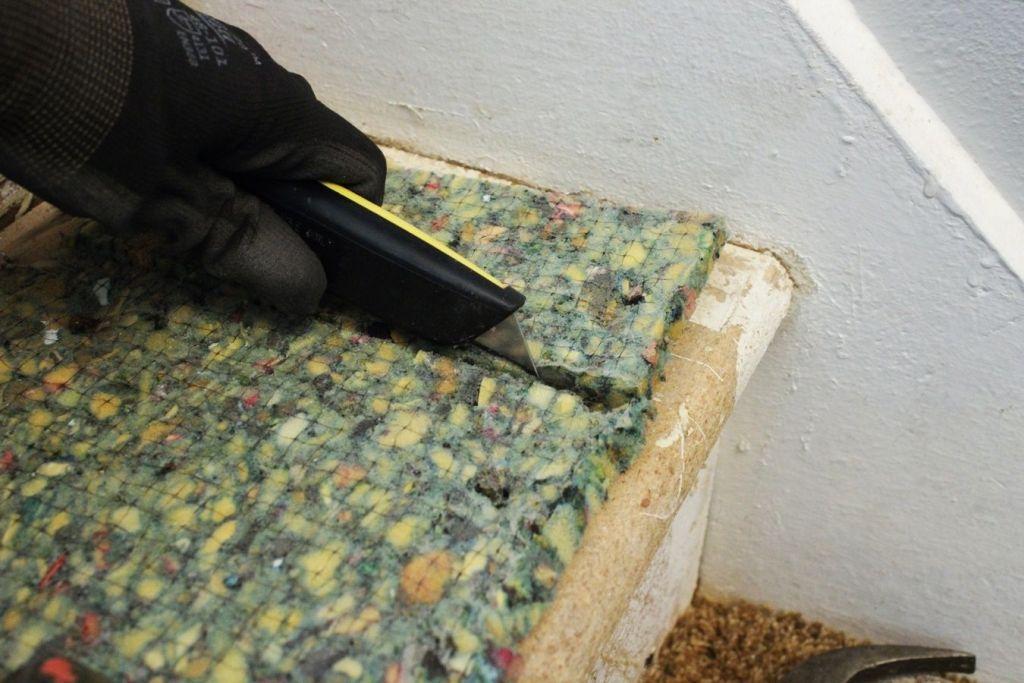 Furniture Pleasing Carpet Pad Automotive Also Home Depot