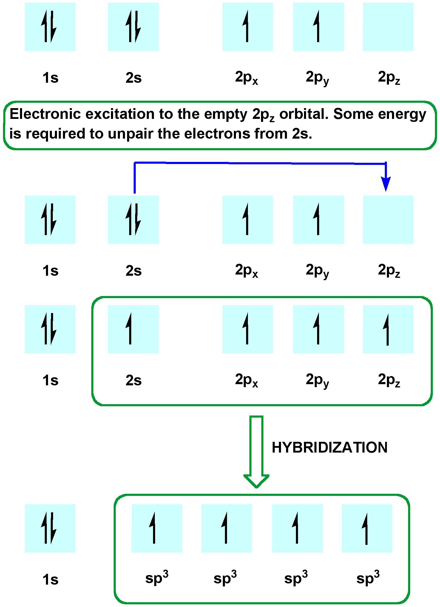 Electron Configurations And The Periodic Table True Or
