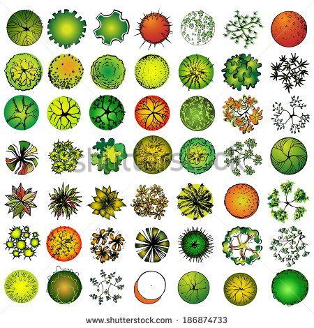 A Set Of Treetop Symbols For Architectural Or Landscape Design