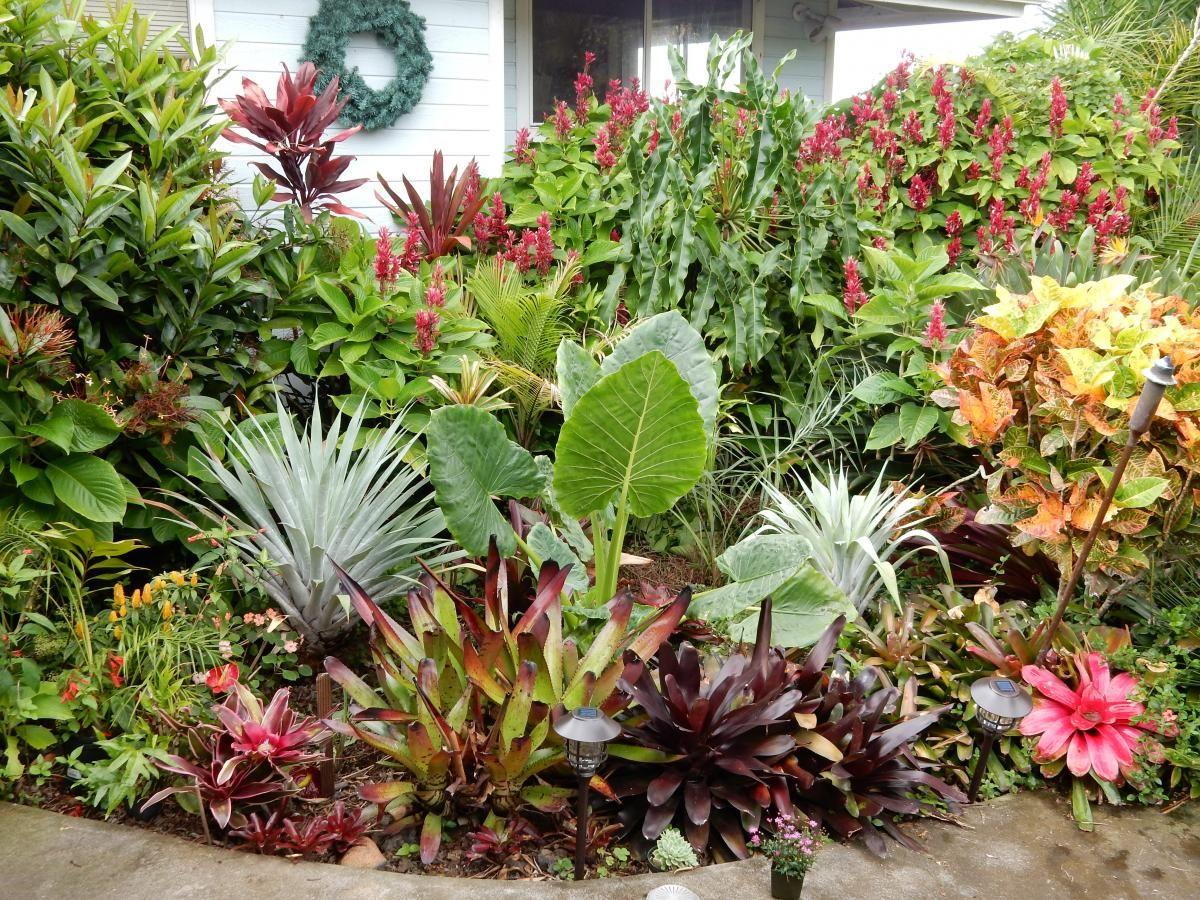 Genial Hawaiian Garden Tropical Garden Design, Garden Design, Hawaiian Gardens,  Tropical Gardens, Elephant