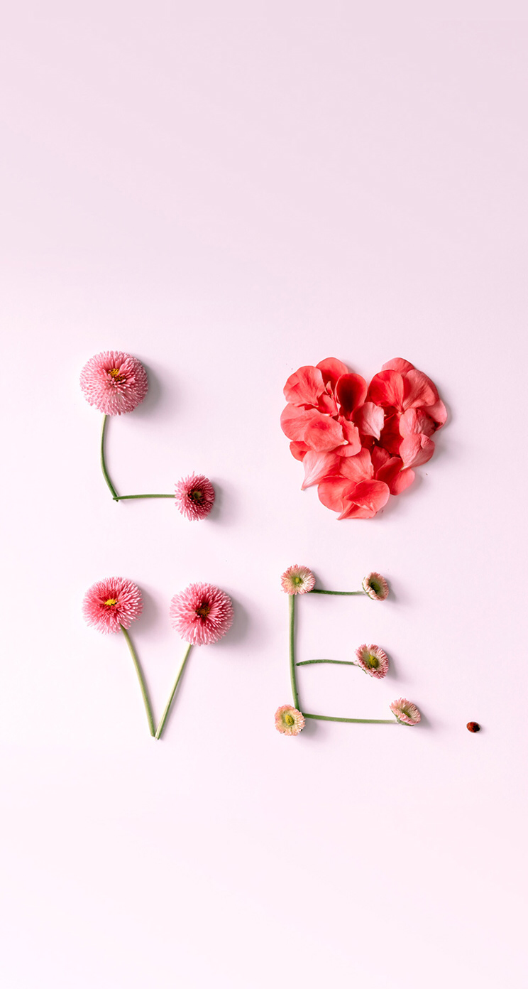 Background Wallpaper Iphone Love Flower Art Valentines Wallpaper