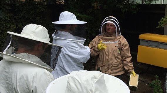 Full Day Bee Keeping | Hen Corner