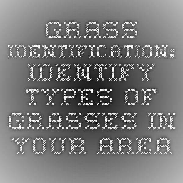 identify grass types