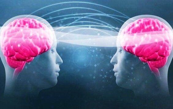 Triptofano e serotonina: aumentare il benessere – La Mente è Meravigliosa