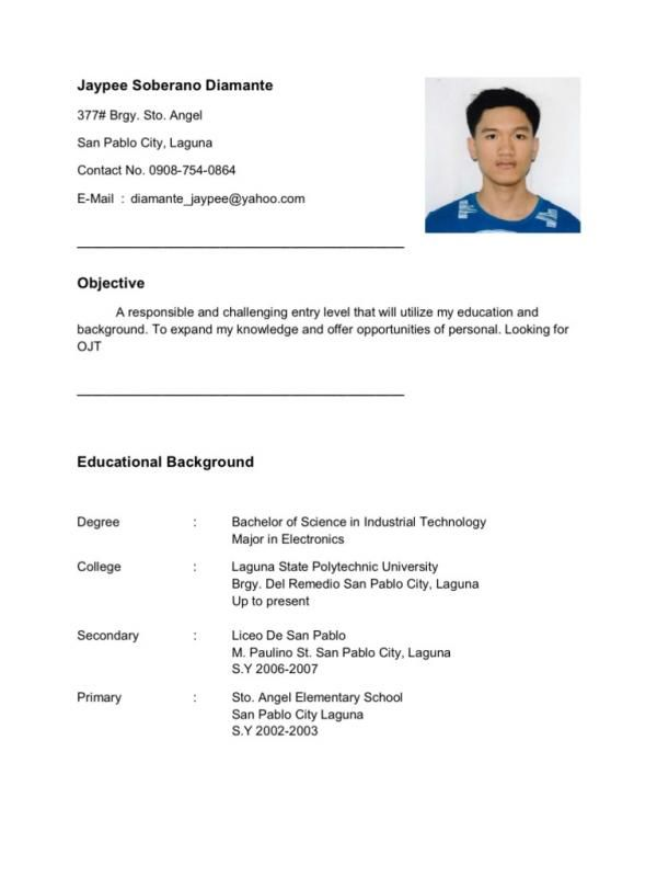 Resume Templates Free Download For Microsoft Word  With