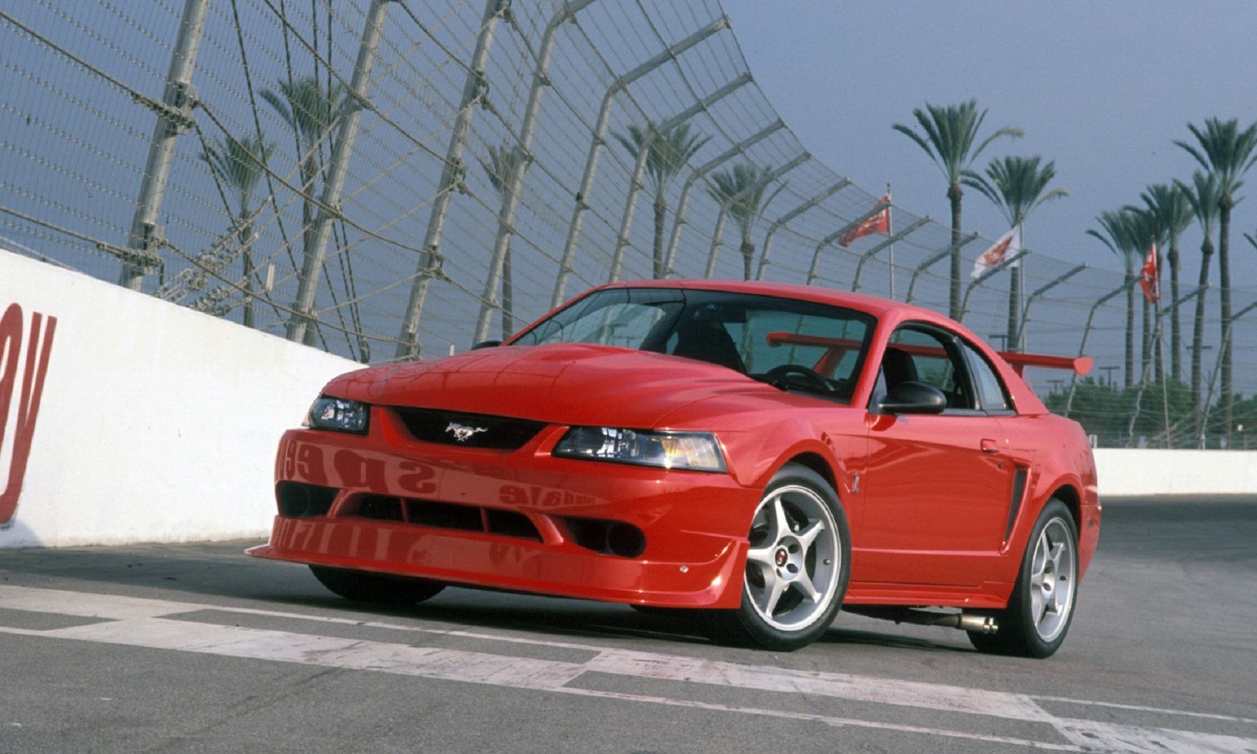 Mustang 20 Years Of Iconic Rides Ford Mustang Cobra 2000 Ford Mustang Mustang Cobra