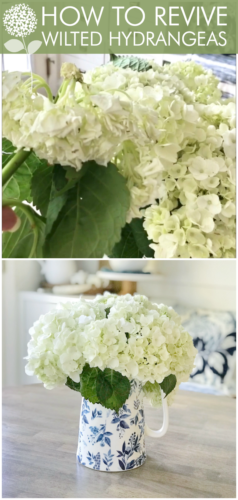 Flower Hack Easy Tip On How To Revive Wilted Hydrangeas Hydrangea Care Wilted Flowers Planting Hydrangeas
