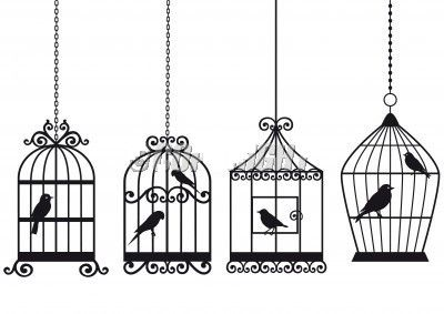 Bird Cages Vintage Bird Cage Birdcage Drawing Sticker Wall Art