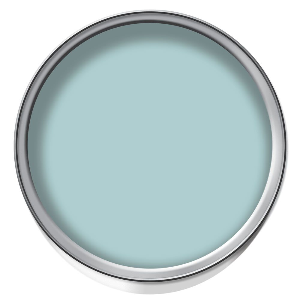 front door colour - wilko colour matt emulsion paint duck egg 2.5