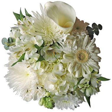 Mixed Farm Bunch Simply White 8 Bunches Sam S Club Fresh Wedding Flowers Wedding Flower Packages Floral Bouquets Wedding