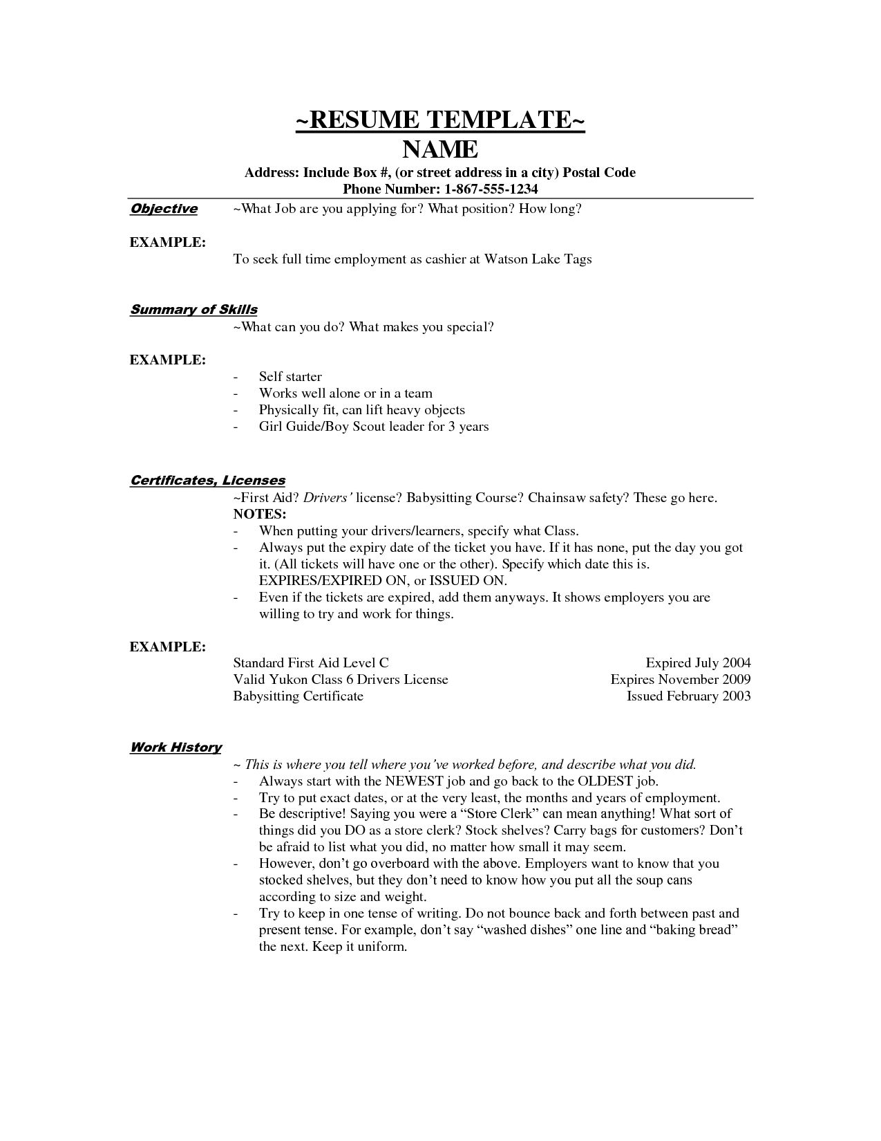 Examples Resumes Resume Career Summary Professional Samples Other