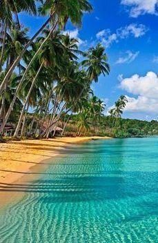 Carribean Beach In Fort Myers Fl