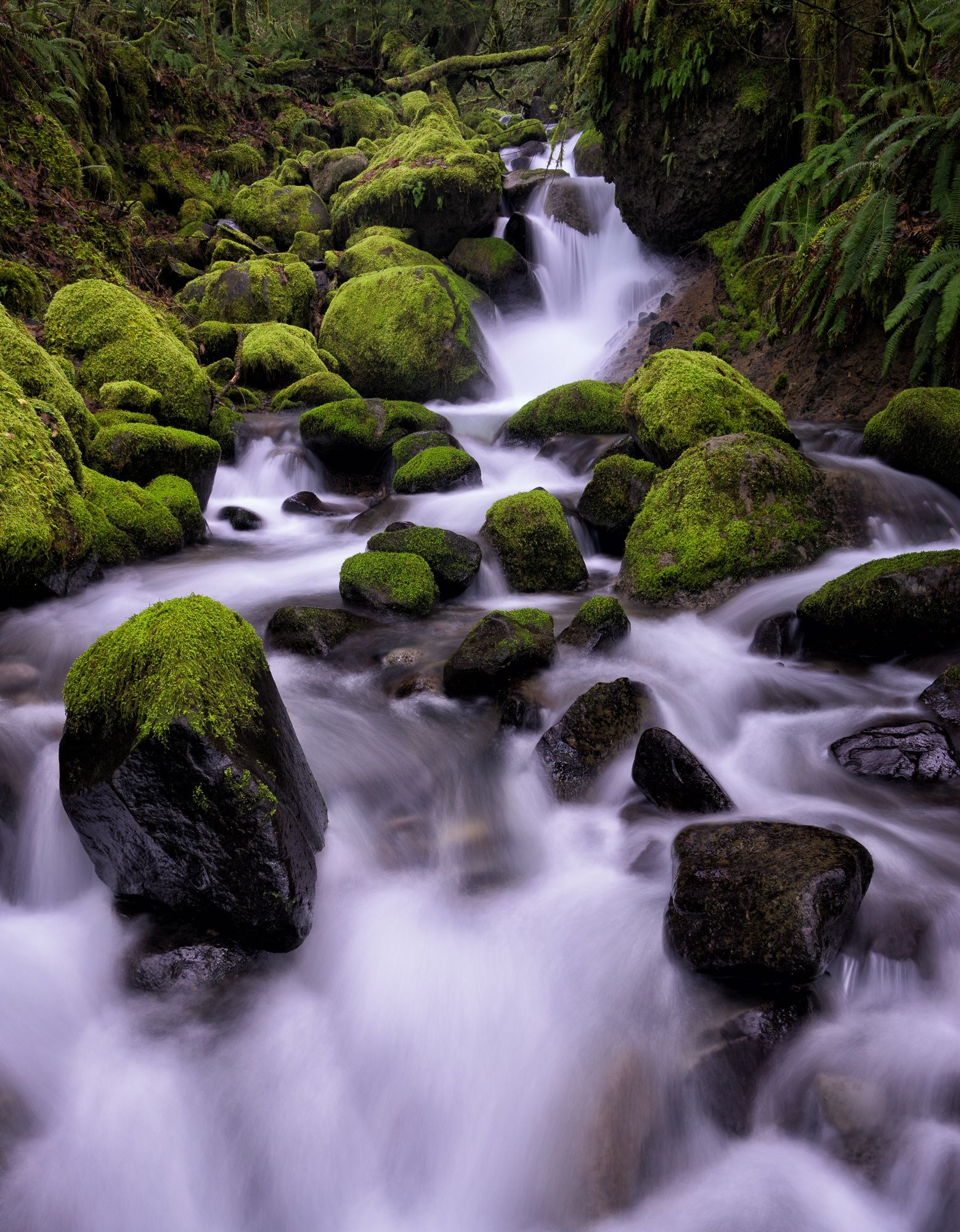 Ruckel Creek by Brian Bonham on 500px