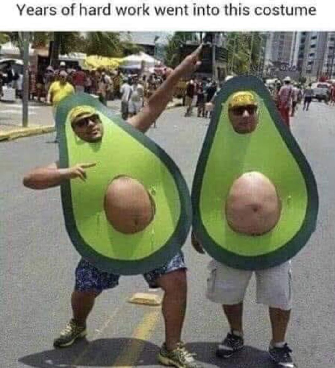 Pin By Grace Lee On Halloween Funny Pictures Avocado Costume Halloween Costumes