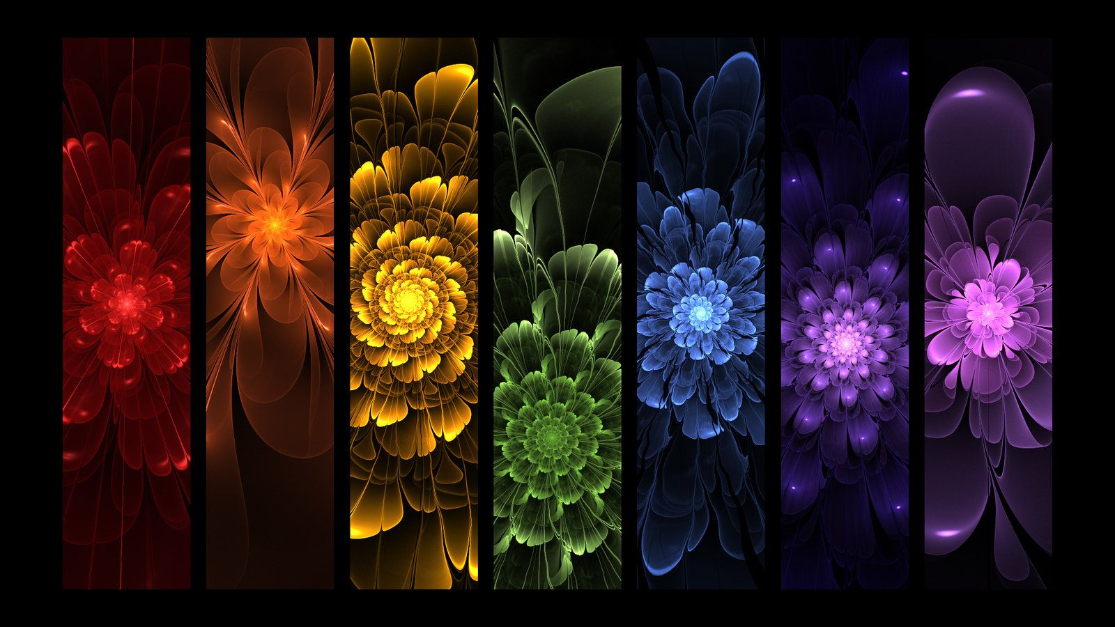 rainbow flowers wallpaper paintings - photo #10