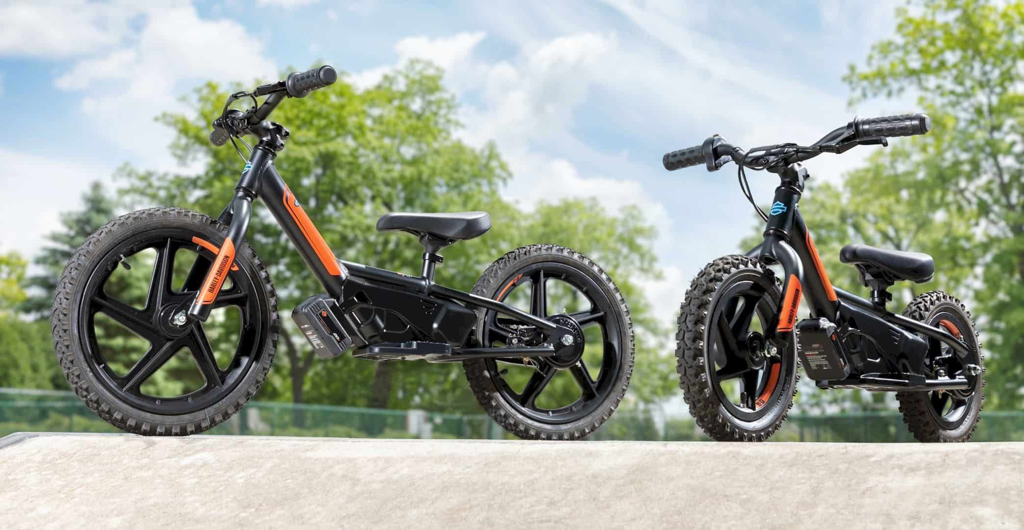 Comprehensive Buying Guide Electric Bikes For People Of All Ages