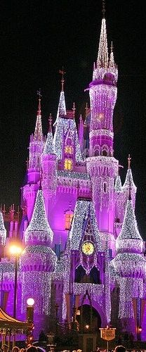 There is nothing like Cinderella's castle when it turns purple ! I CAN STILL DREAM OF MY PRINCE MY CASTLE