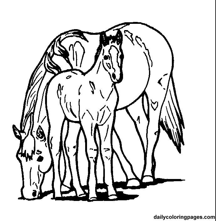 barbie and horse colouring in x coloring pages | coloring ... - Mom Baby Horse Coloring Pages