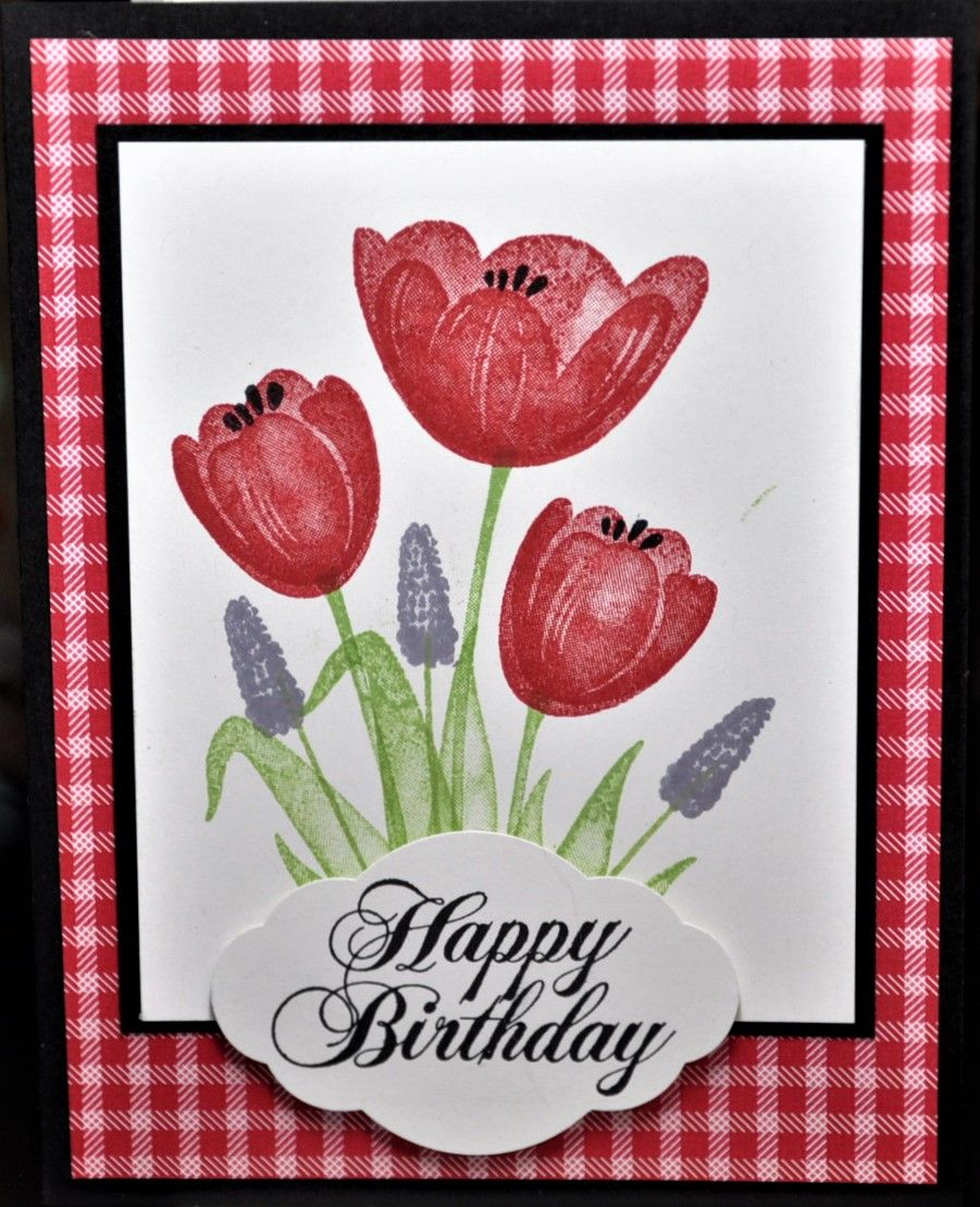 Pin by Sue Craig on Tranquil Tulips  Pinterest