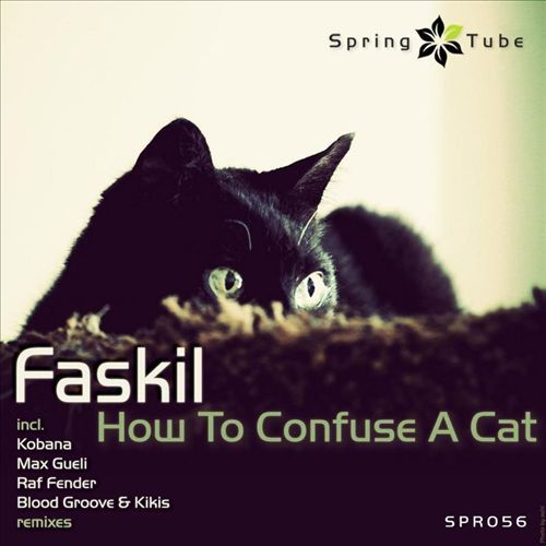 Faskil - How to Confuse a Cat
