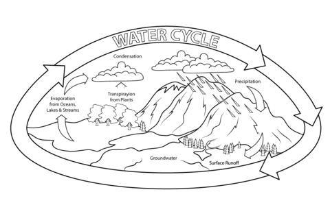 Water Cycle coloring page from Natural phenomena category