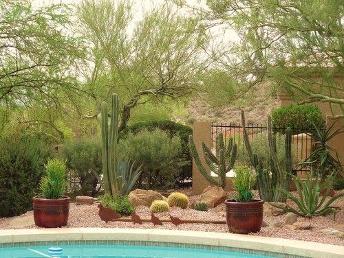 20+ Maravillosos Jardines de Cactus | Cactus, Jardines y Jardín