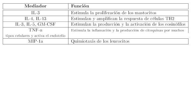 ANATOMIA PATOLOGICA GENERAL: Reacciones de hipersensibilidad ...