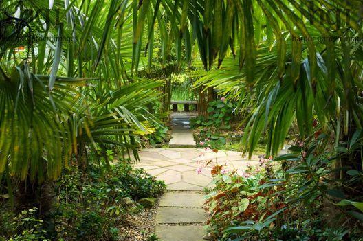 Harpur Garden Images Ltd :: henstead100 Circular round paving slab patio terrace bamboo bench seat Henstead Exotic Garden, Suffolk Marcus Harpur