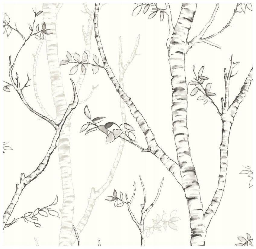 Tapeta Winylowa Brzoza Tapety W Drzewa ścienne Tapety W