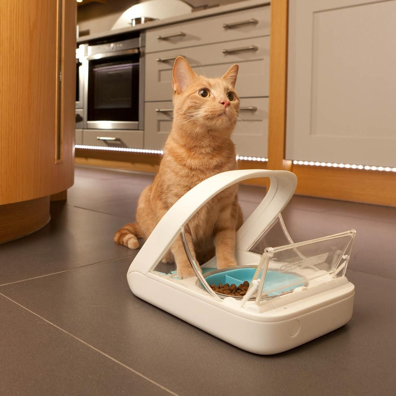 The SureFeed Microchip Pet Feeder is perfect for multipet