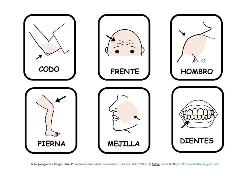 cuentos sobre el cuerpo humano para niños - Buscar con Google | El ...