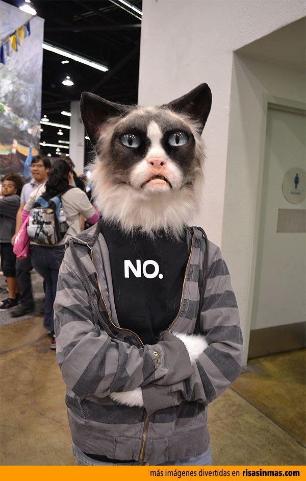 Disfraces originales: Gato cabreado (Grumpy Cat)