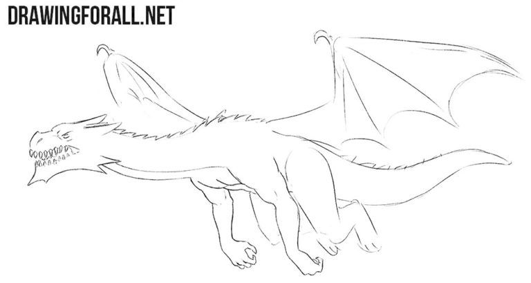 How to Draw a Flying Dragon (With images) Drawing