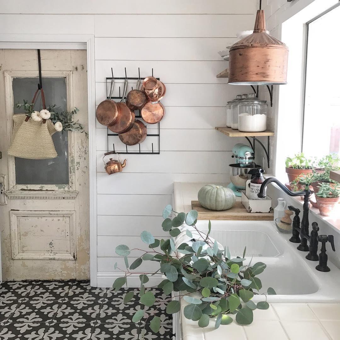grün, zimmerpflanzen, pflanzen, natur, küche, wohnen, fliesen ...
