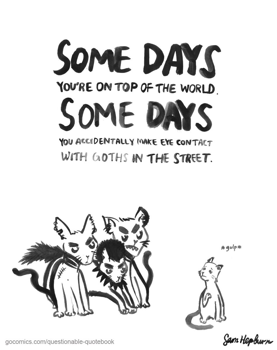 Quotes For Kids About Life Goths Somedays Quotes Life Cats Feline Badguys