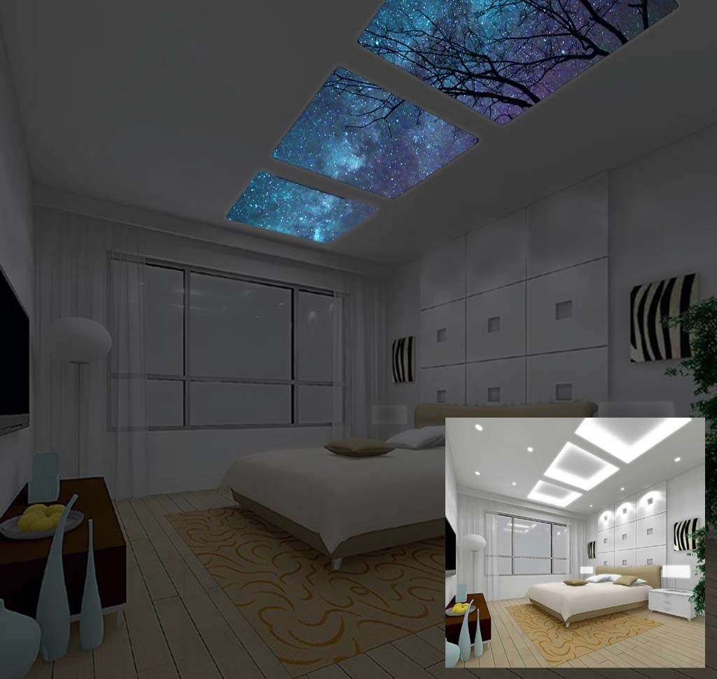 Sky lights stary nights glow in the dark art to bring for Mural room white house